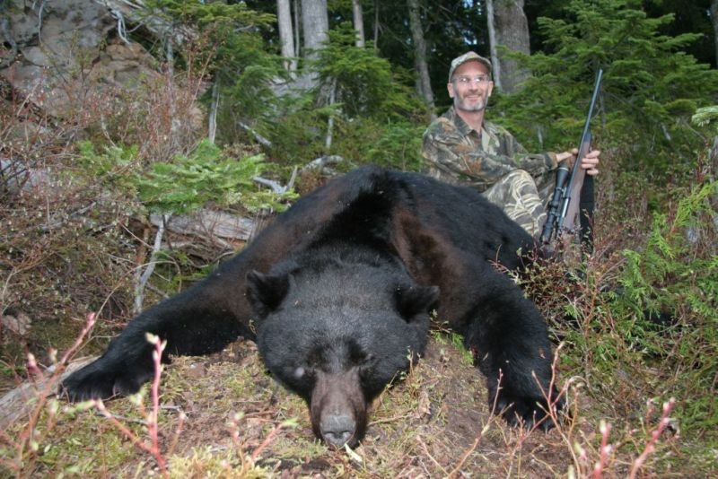 CamoTherapy: the right bear