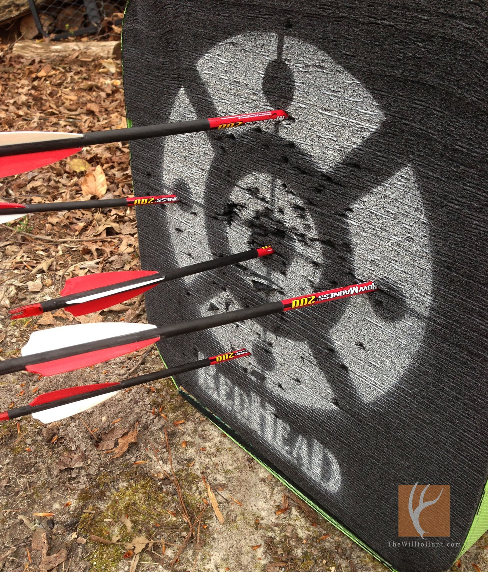 Five things to do with your bow in the off season