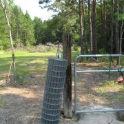 Chicken yard with gate
