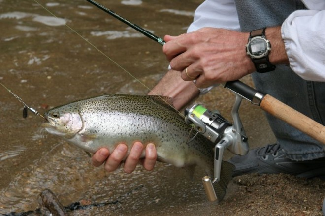 fishing for autumn trout - alloutdoor, Reel Combo