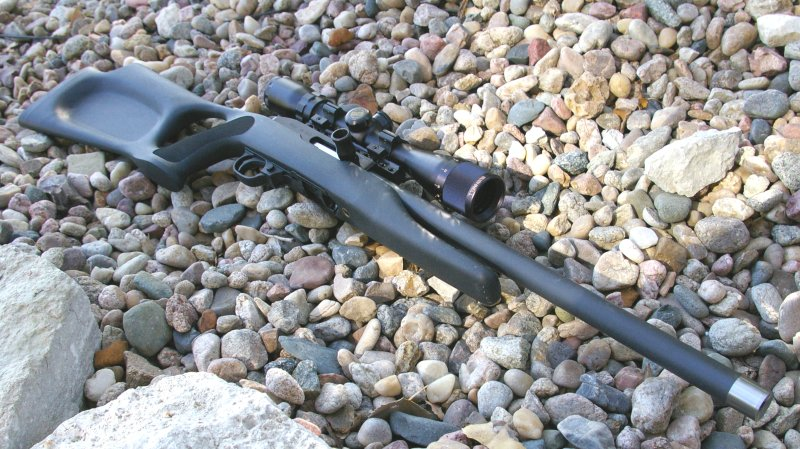Magnum Research MLR22AT 10/22 Review