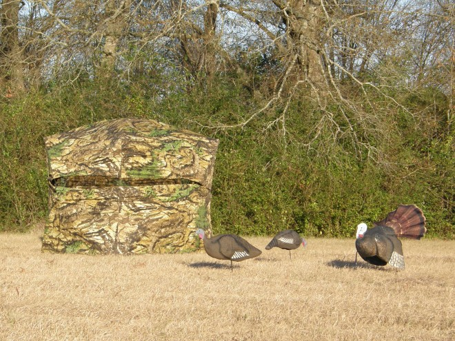 Ground Blinds are Back in Vogue