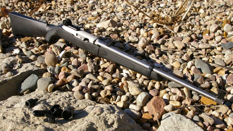 Tech Sights: AR-style Survival Sights for the Ruger 10/22
