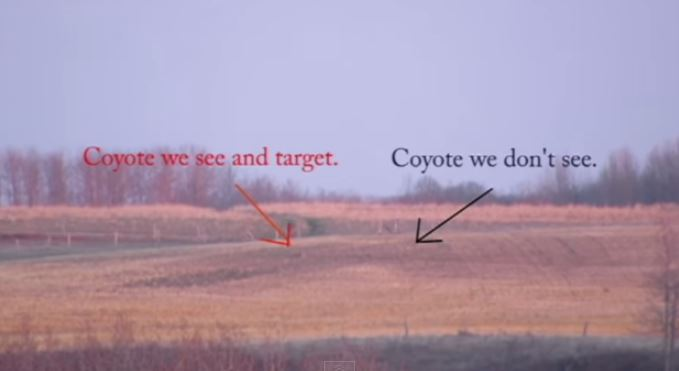 Longest Coyote Shot at 1,860-Yards on Video