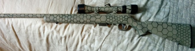 Here's an overall pic of the hexagon-painted rifle
