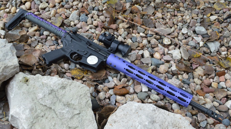Purple Passion AR15 Build for my Wife