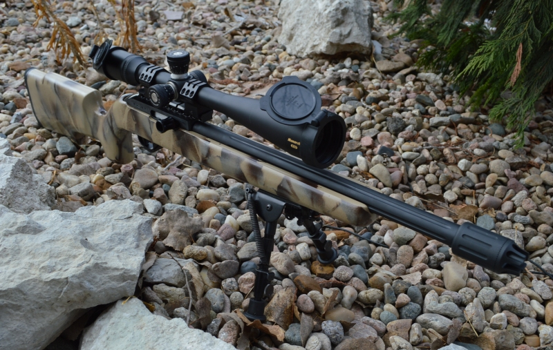 Build Review: Custom 10/22 Long Range Tack Driver