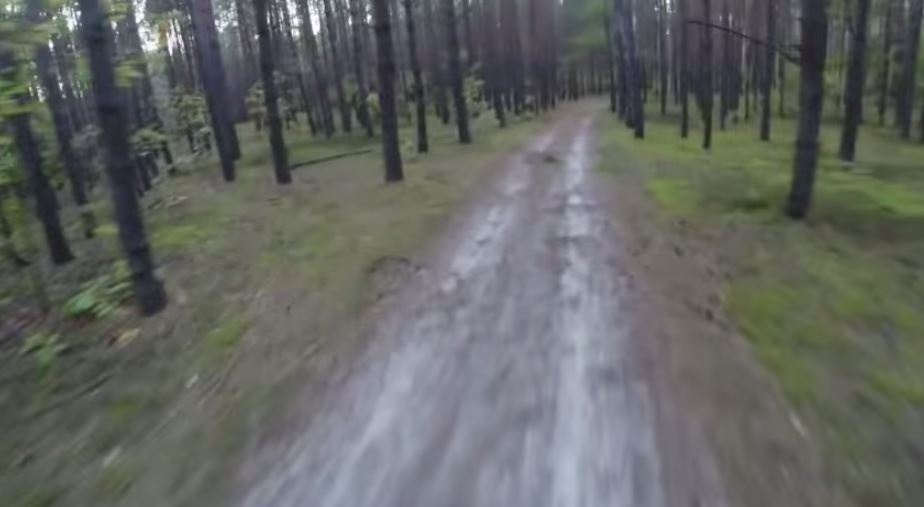 Watching This Made me Never Want to Bike in the Woods Again