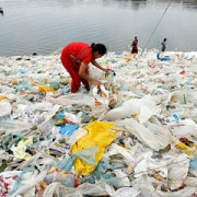 plastic_bags_are_killing_us