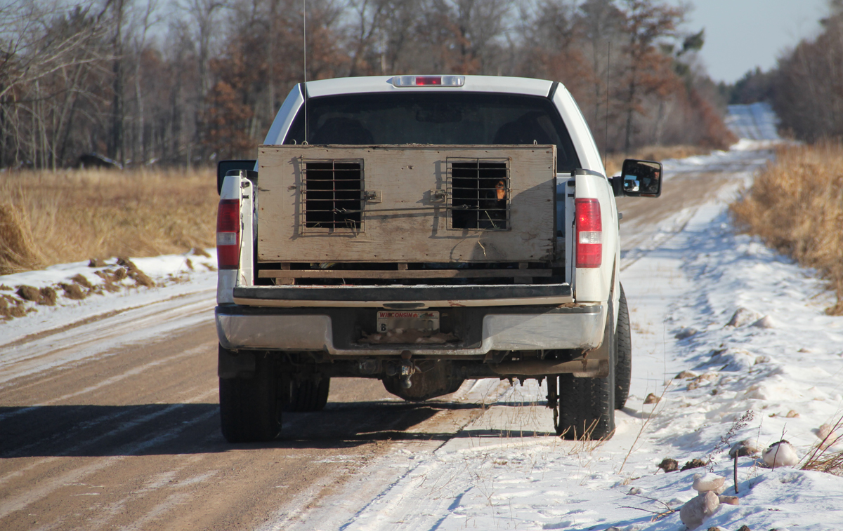 Proposed Wisconsin Law to Strengthen Hunter Harassment Penalties