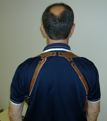 A back view of the Alessi Bodyguard harness.