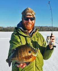 Panfish on the Rocks