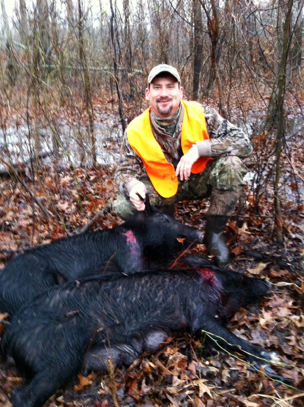 Wild Hogs and Collateral Hunting Opportunities