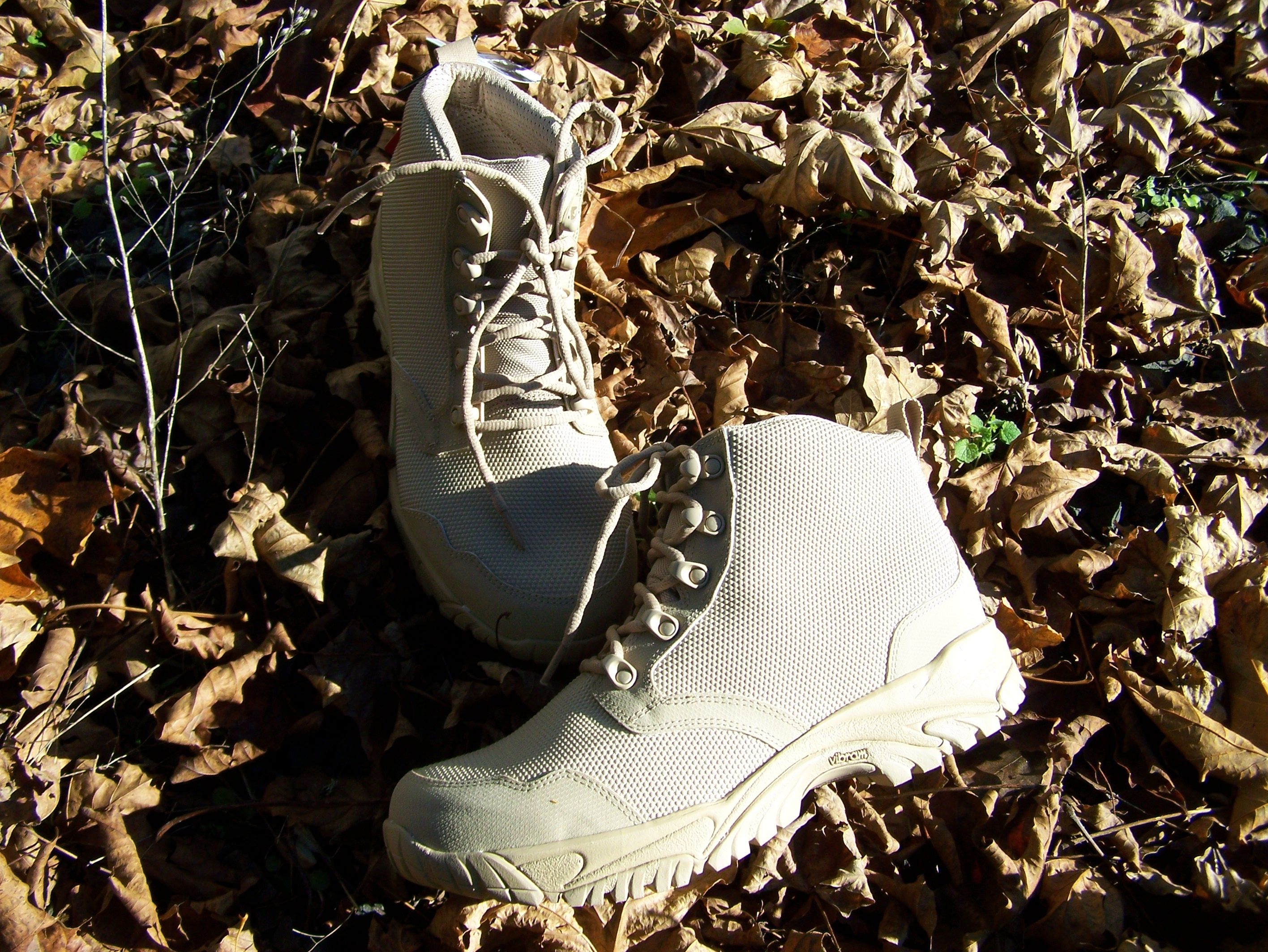 Review: Altai Low Top Tactical Boots