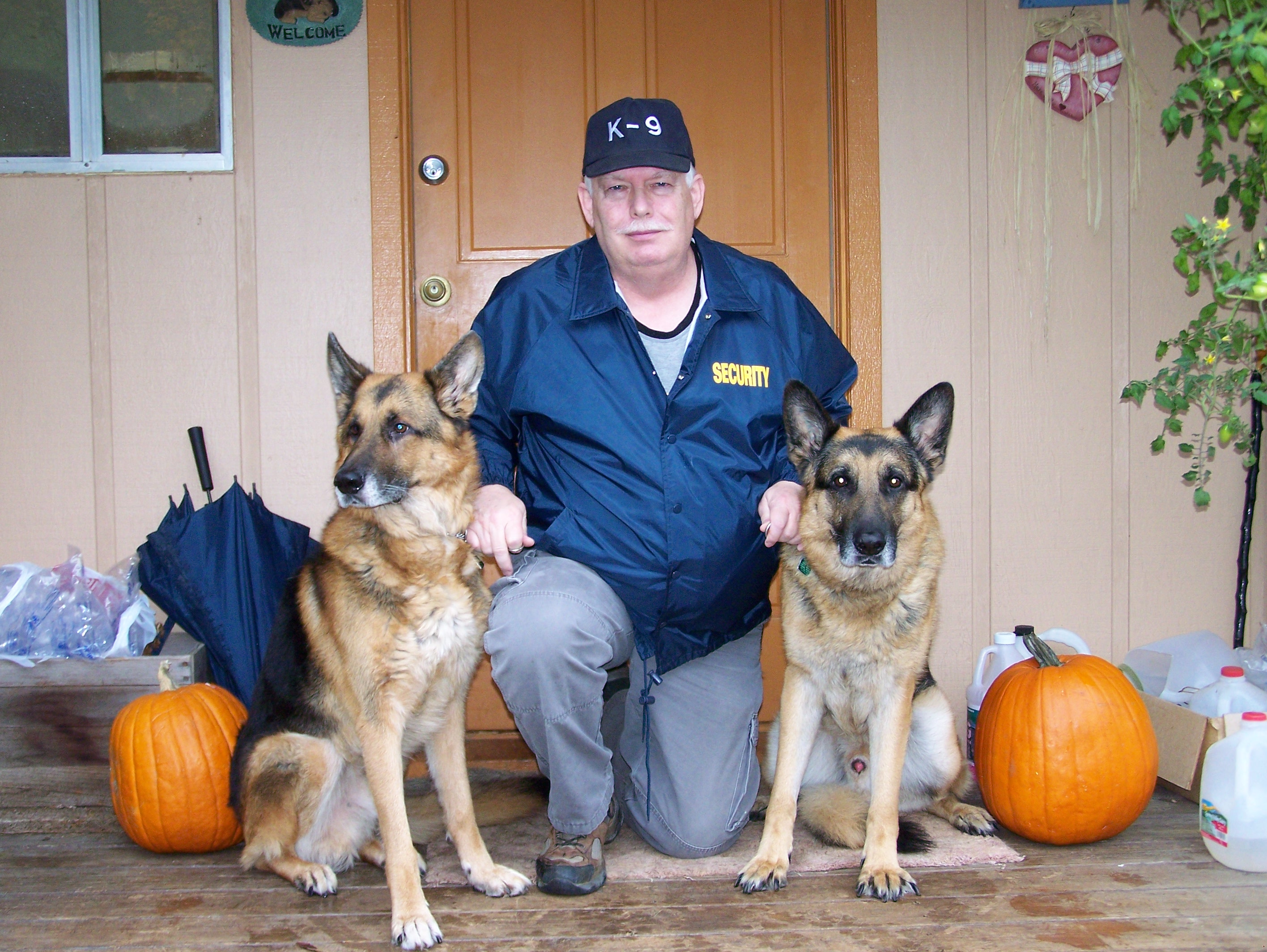 German Shepherds for Personal Protection