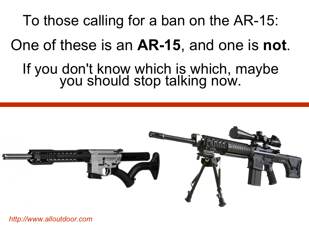 For All the Folks Calling for an AR-15 Ban