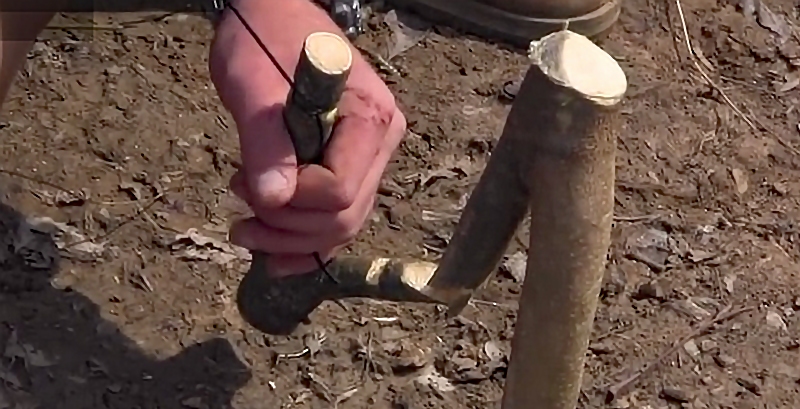 Watch: How to Make a Spring Pole Fishing Rig for Survival