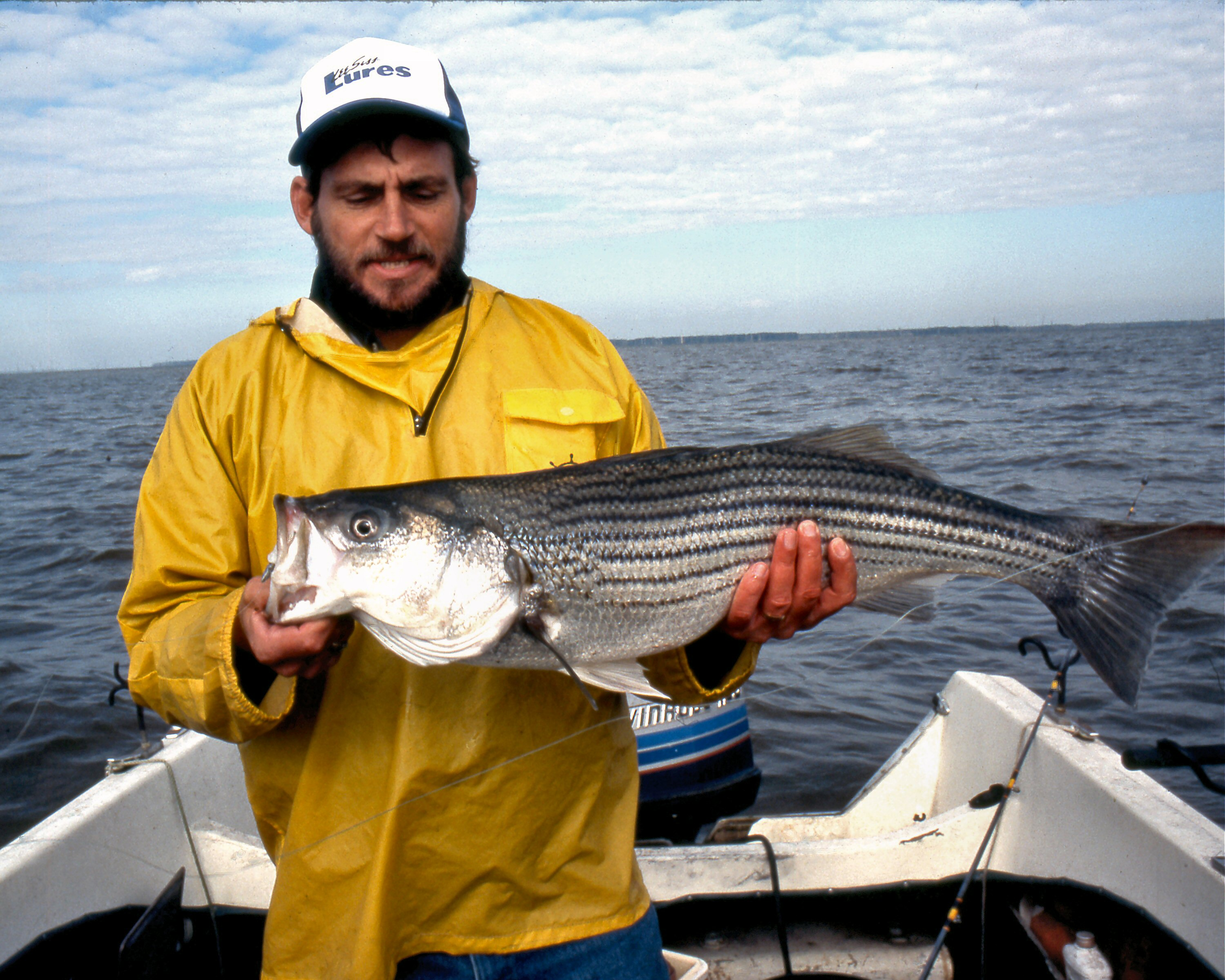 Summer Fishing Spot: Tennessee's Pickwick Reservoir Prime For Stripers