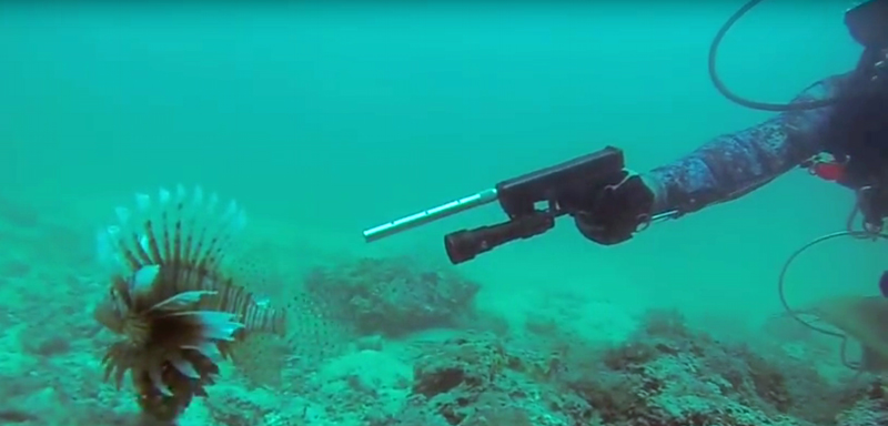 Watch: Glock Fishing for Lionfish