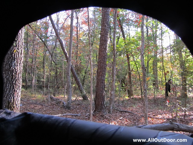 Looking through the large window of a ground blind