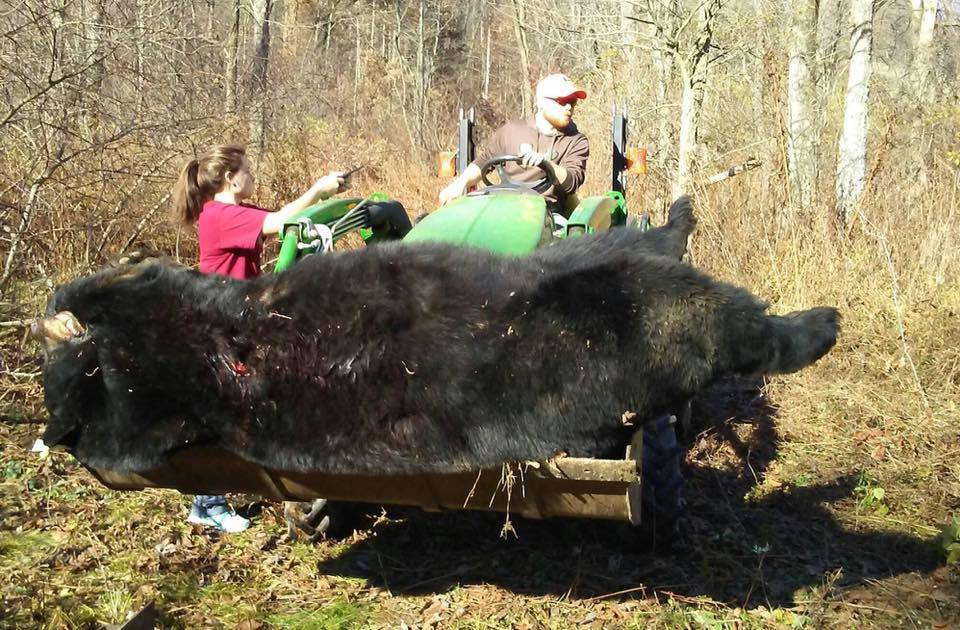 740-Pound Archery Bear Could Set a New State Record
