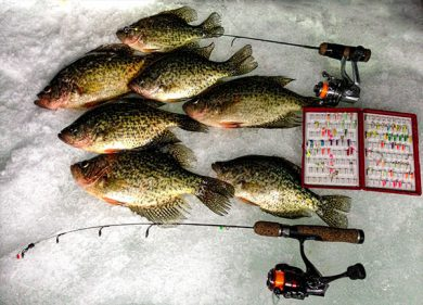 good-catches-of-crappie-are-possible-on-super-light-ice-fishing-jigs