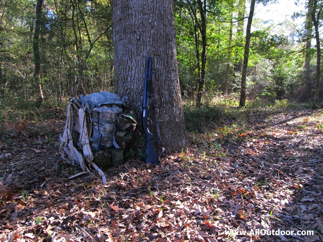 Large MOLLE with Mossberg 590