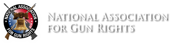 Pro-Gun Agenda Petitions Going To White House