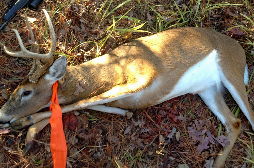 Review: Deer Dragger Harness for Recovering Big Game Animals