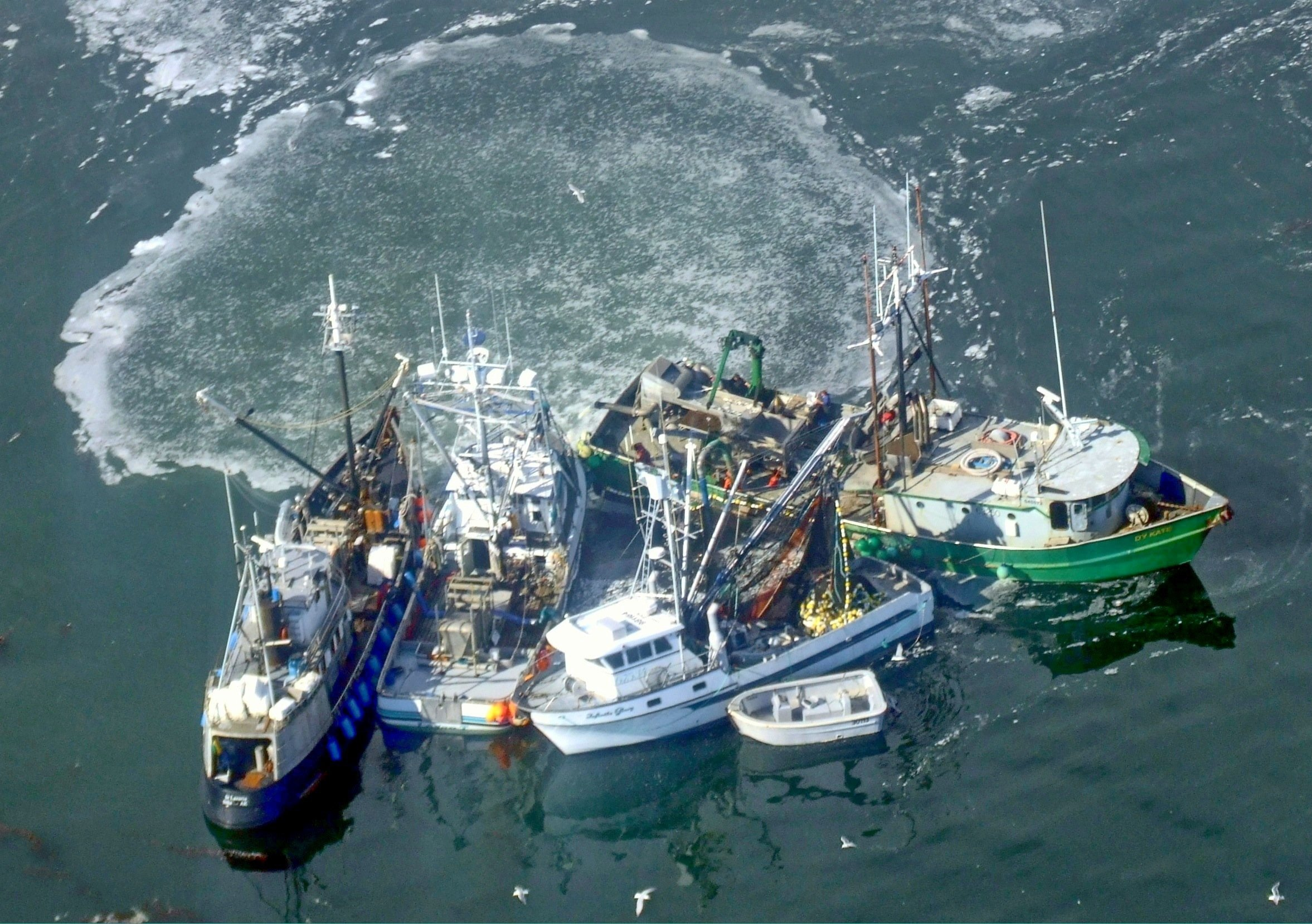 Trump's New Regulations Order Not to Affect Fisheries
