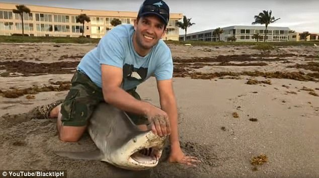Donald Trump Jr. & Sons Catch-And-Release Sharks, Take Heat From Haters