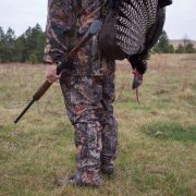 The author's Remington 870 and one of the turkeys it took.