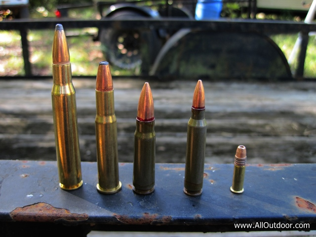 Preppers: What Calibers do Friends and Family Members Shoot?