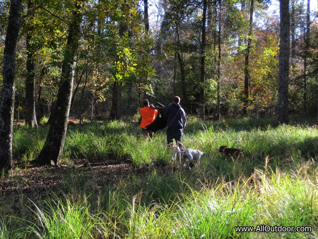 Preppers: Using Dogs to Hunt Wild Pigs