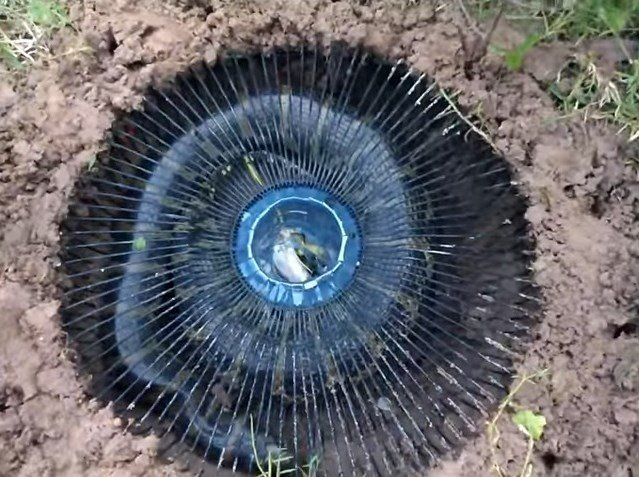 Watch: Electric Fan Guard Snake Trap