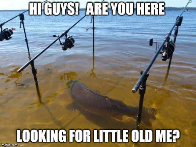 fishing-meme-08