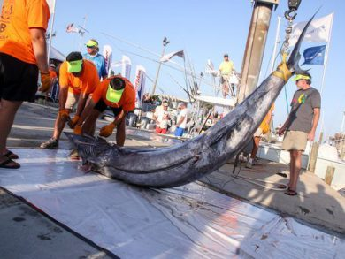 636345446375872916-sm-2017-0701-billfish-tournament-0038