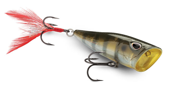 Storm Arashi Cover Pop Topwater Lure: ICAST 2017