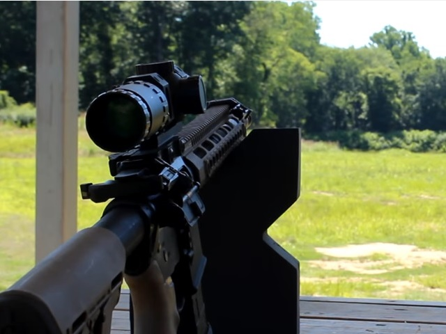 Watch: Primary Arms ACSS Scope Review