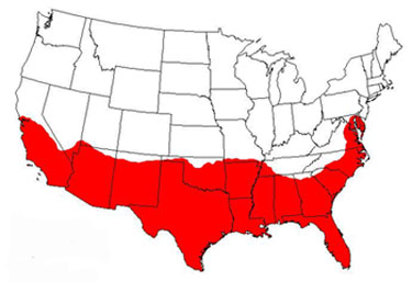 fire-ant-infestation-map