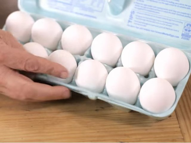 Six Historical Egg Preservation Techniques