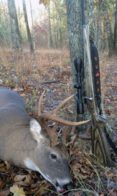 A few hours into this rifle's first deer hunt, one shot dropped this fine buck in its tracks. (Photo © Russ Chastain)