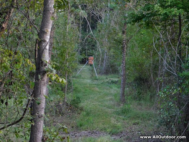 Get in the Stand Before Hunting Season