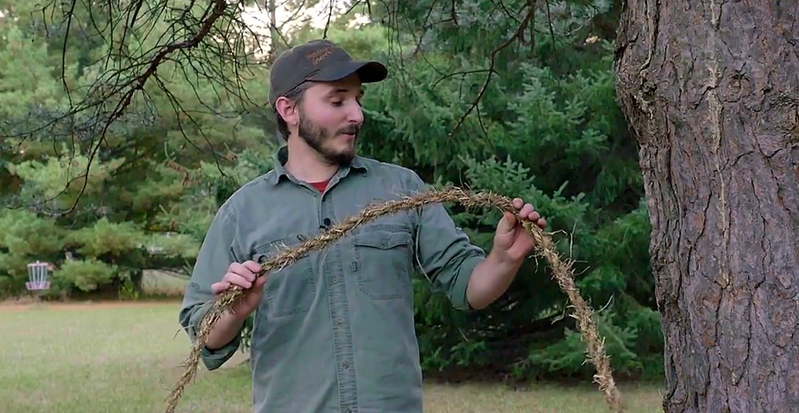Watch: Improved Method for Making DIY Grass Rope