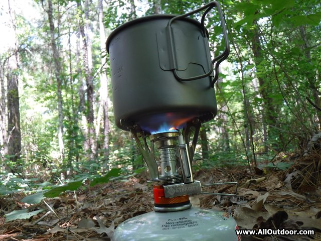 Cooking with the Etekcity Stove