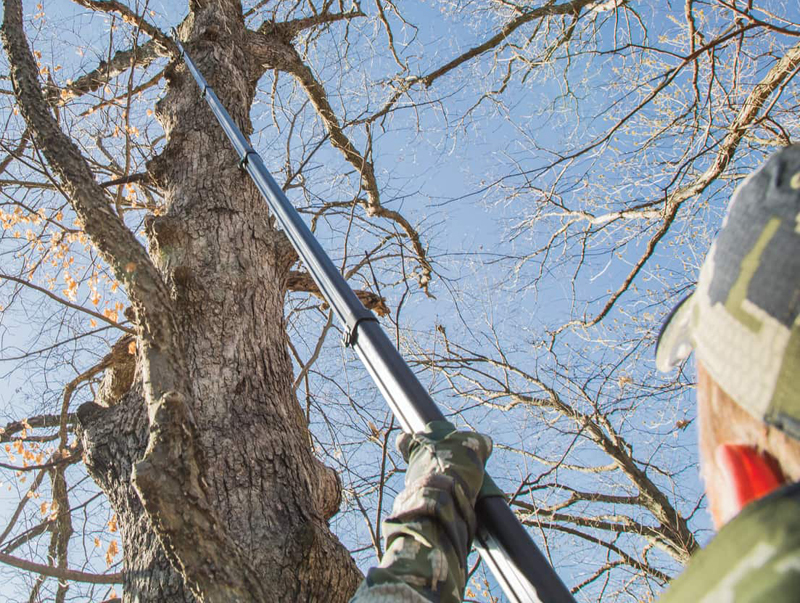 Vital Deer Hunting Tools: Tree and Brush Cutters