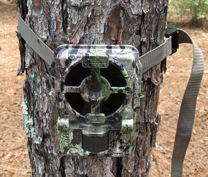 Review: Primos Proof Generation 2 02 Game Trail Camera