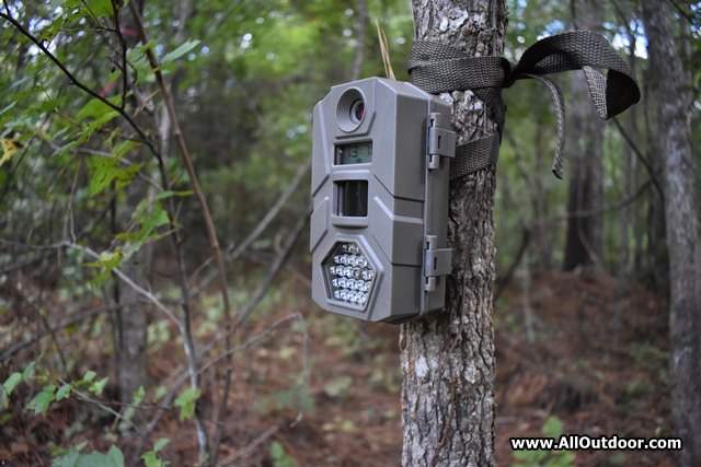 Are Cheap Trail Cameras Worth The Money?
