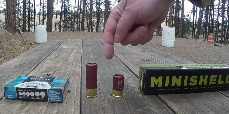 Aguila Minishells for Home Defense?