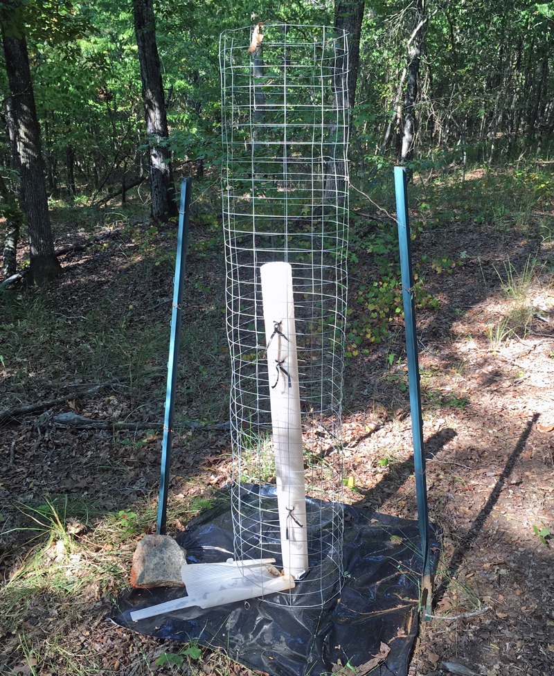 I used metal fence posts and baling wire to secure the cage. (Photo © Russ Chastain)